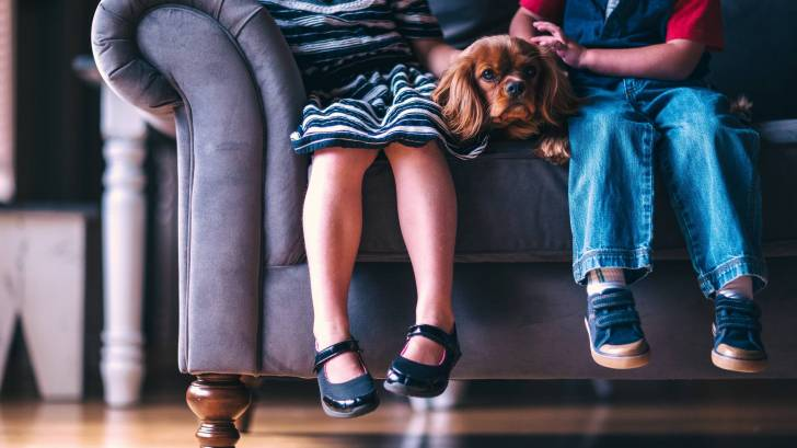 children sitting on a couch with their dog