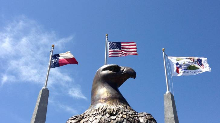 texas, us flag with eagle in front