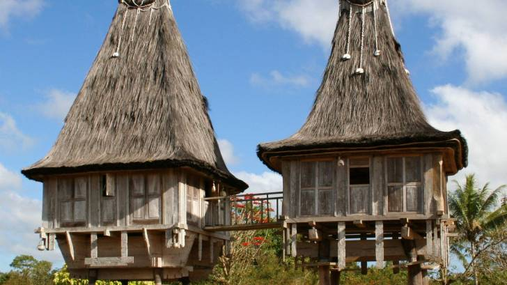 wooden huts in timor leste