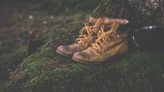 hikning boots in the woods