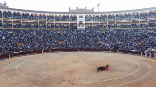 bull fight ring in  MAdrid