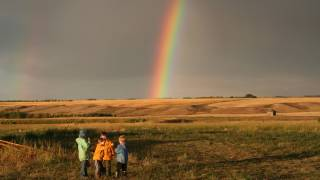 children in a field with a rainbow