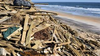hurricane debris on the beach