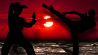 martial arts, 1 2 kick fight