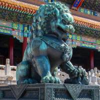 chinese lion statue in front of temple