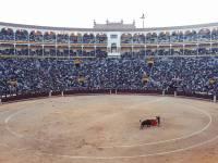 bull fight ring in  MAdrid