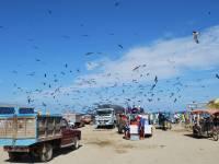 ocean side town in ecuador
