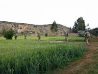 Troops walking through a field